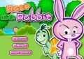 race with rabbit